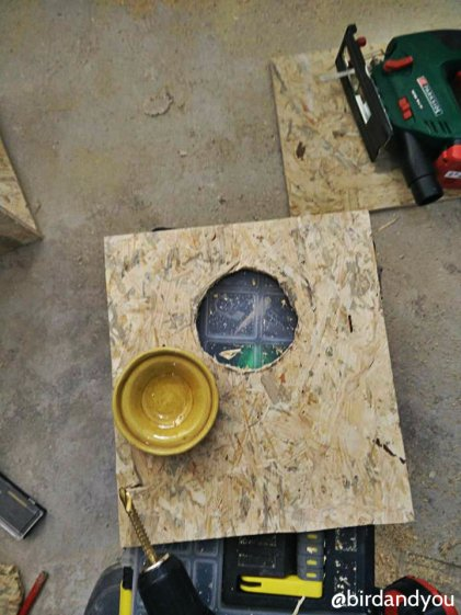 fabrication nid perruche 8