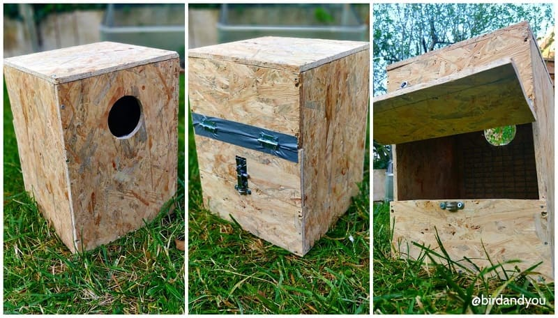 Fabriquer nid pyrrhura 5 2020 - How to make a nest for parakeets in 5 steps