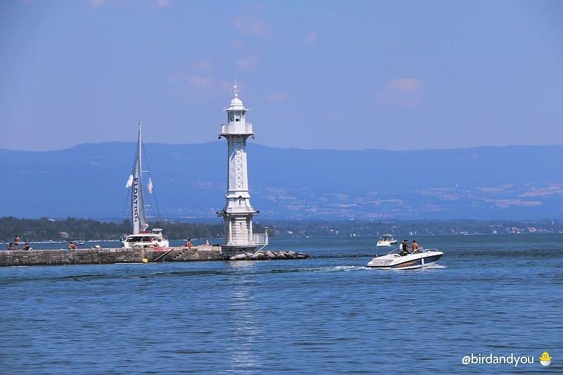 Bilan Lac léman Genève