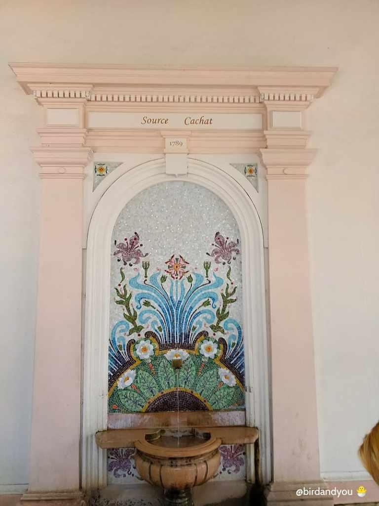 Bilan Source cachat Evien-les-Bains