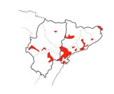 Bonelli's Eagle distribution map in northeast Spain