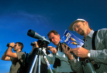 Birders with binoculars, telescope and field guide