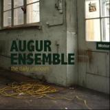 "Augur Ensemble - ""The Daily Unknown"""