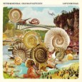"""Peter Rosendal - """"Love For Snail"""""""