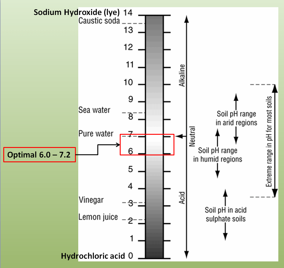 hight resolution of importance of soil ph