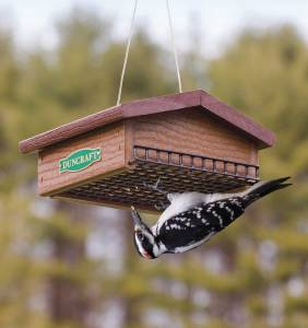 duncraft eco strong suet feeder