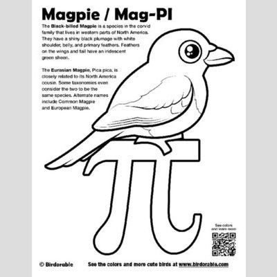 Mag-PI Coloring Page with Birdorable Magpie