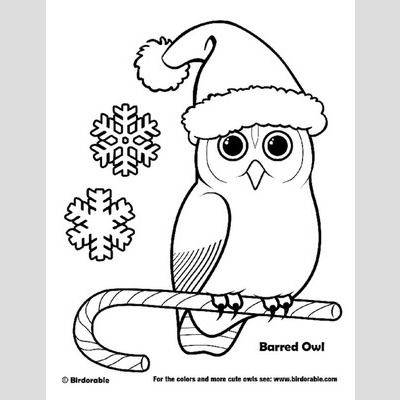 Christmas Barred Owl Coloring Page