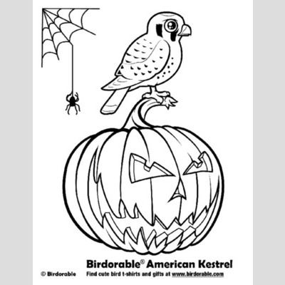 Halloween American Kestrel Coloring Page