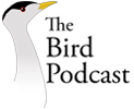 Bird Podcast - Exploring nature with Shoba Narayan