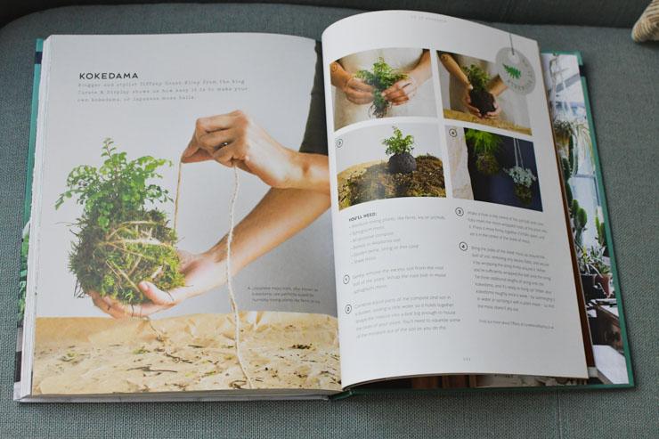 """Mon avis sur le beau livre """"Urban Jungle"""", qui parle de cette tendance de décorer avec les plantes chez soi"""
