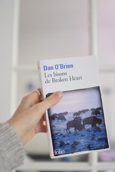 Les bisons de Broken Heart: mon avis sur ce livre sur le blog