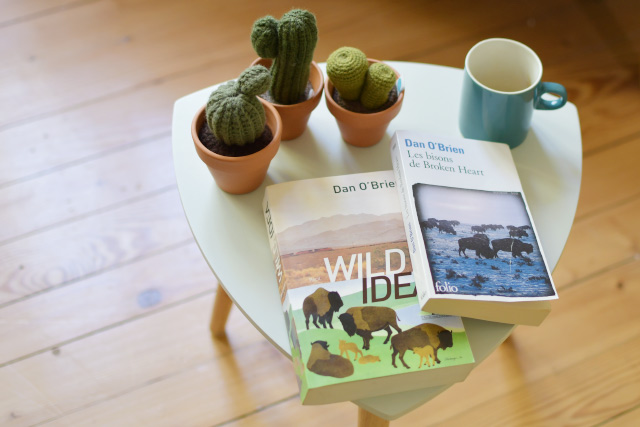 Conseil de lecture: les romans de Dan O'Brien dans les grands espaces américains