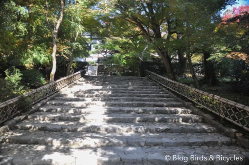 jardin-du-ryoan-ji-kyoto