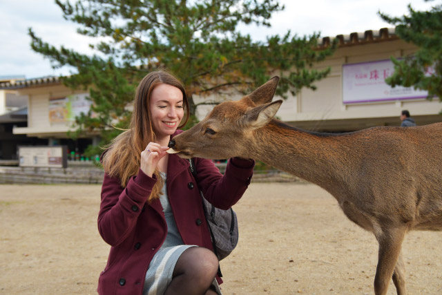 Nara - Voyage au Japon sur le blog lifestyle et féminin Birds & Bicycles