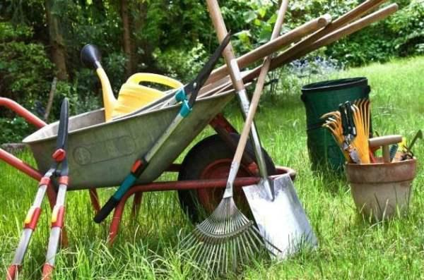 garden chores warm winter days