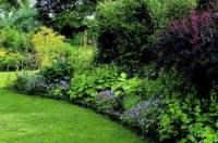 Gardening | Shade Gardening | Shade Garden Ideas