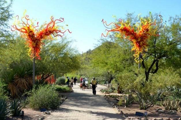 Desert Flowers Botanical Garden