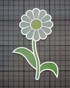daisyedgecard4
