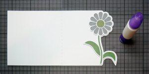 daisyedgecard5