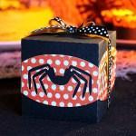 Spidey Favour Box