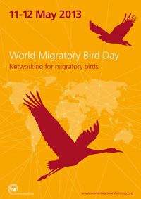 World Migratory Bird Day poster (English)