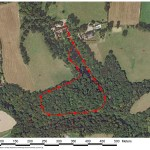 Rozel Manor site with transect. Map by Tim Wright