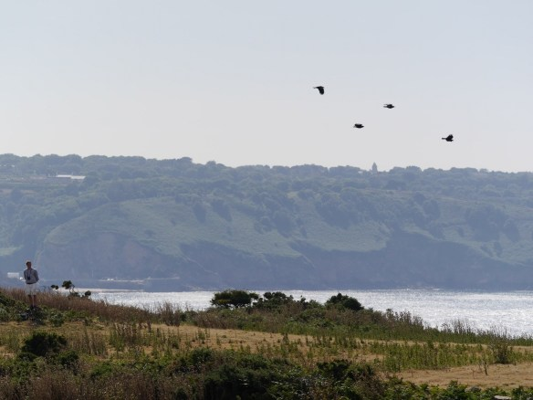 Famous four flying over Mourier Valley