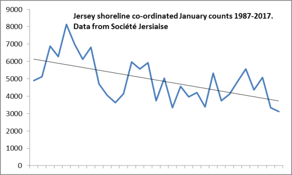 Jersey January shorebird counts 1987-2017