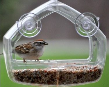 an inexpensive window bird feeder that is durable and easy to use
