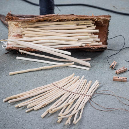 Mahoe sticks