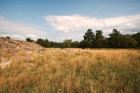 Bild: Die Ruinen der Burg Ismantorp auf der Insel Öland. NIKON D700 und AF-S NIKKOR 24-120 mm 1:4G ED VR.