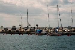Bild: Unterwegs im Hafen von Mörbylånga auf der Insel Öland. Das vergleichsweise milde Klima auf der Insel Öland lässt sogar Palmen wachsen. NIKON D700 und AF-S NIKKOR 24-120 mm 1:4G ED VR.
