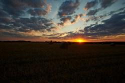 Bild: Sonnenuntergang auf dem Windmühlskopf zwischen Greifenhagen und Bräunrode. NIKON D700 und CARL ZEISS Distagon T* 2/25 ZF.2.