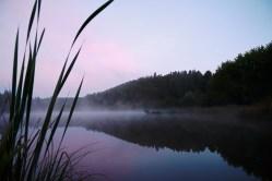 Bild: Morgenstimmung am Königeröder Teich. NIKON D700 und AF-S NIKKOR 24-120 mm 1:4G ED VR. ISO 800 ¦ f/7,1 ¦ 24 mm ¦ 1/15 s ¦ kein Blitz. Klicken Sie auf das Bild um es zu vergrößern.