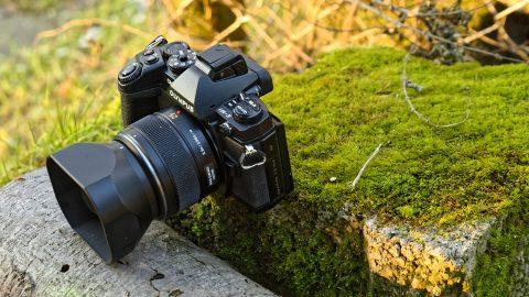 Bild: OLYMPUS OM-D E-M1 mit LEICA DG SUMMILUX 25 mm / F1.4.