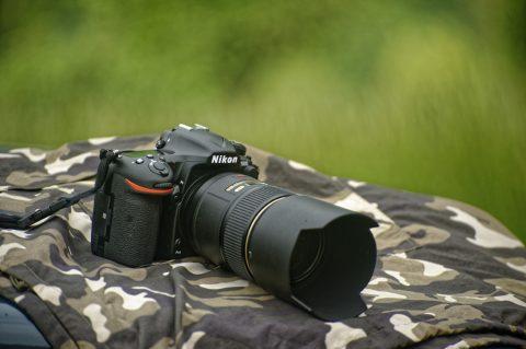 Bild: Die NIKON D500 mit Objektiv AF-S VR MICRO-NIKKOR 105 MM 1:2,8G IF-ED.