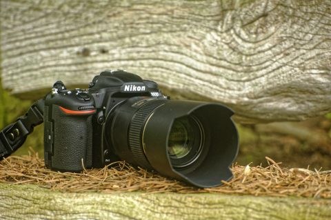 Bild: Die NIKON D500 mit Objektiv AF-S VR MICRO-NIKKOR 105 MM 1:2,8G IF-ED. Klicken Sie auf das Bild um es zu zu vergrößern.