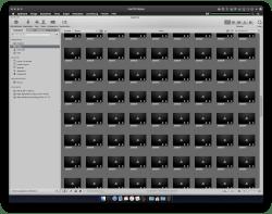 Bild: RAW Dateien moderner Kameras werden in Apple Aperture importiert, aber nicht mehr angezeigt.
