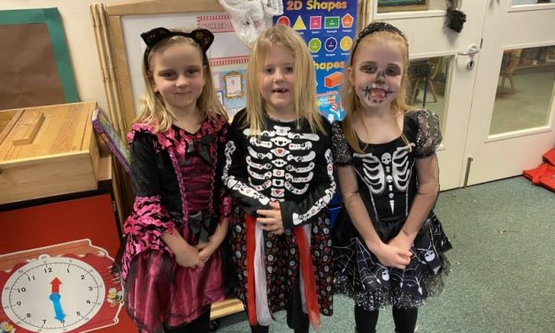 Happy Halloween – Year 1/2 Ladybirds   The Ladybirds thoroughly enjoyed their Halloween-themed day in school and their costumes were just amazing, thank you!