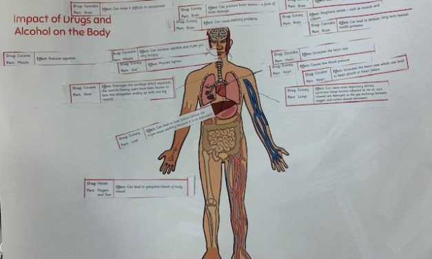 Impacts on the Body