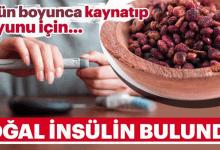 Photo of 7 Gün Süresince Kaynatıp Suyunu İçin..Doğal İnsülin!