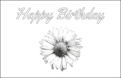 Daisy Card Image