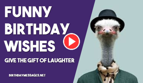 Birthday Messages Funny Happy Birthday Videos To Send Daily Quotes