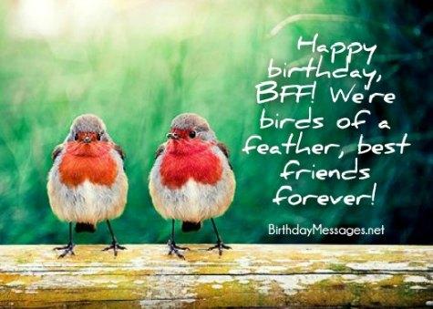 friend birthday wishes 300