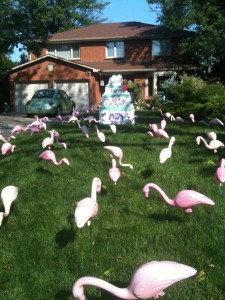 Cake Lawn Sign  and Flamingos Lawn Greetings