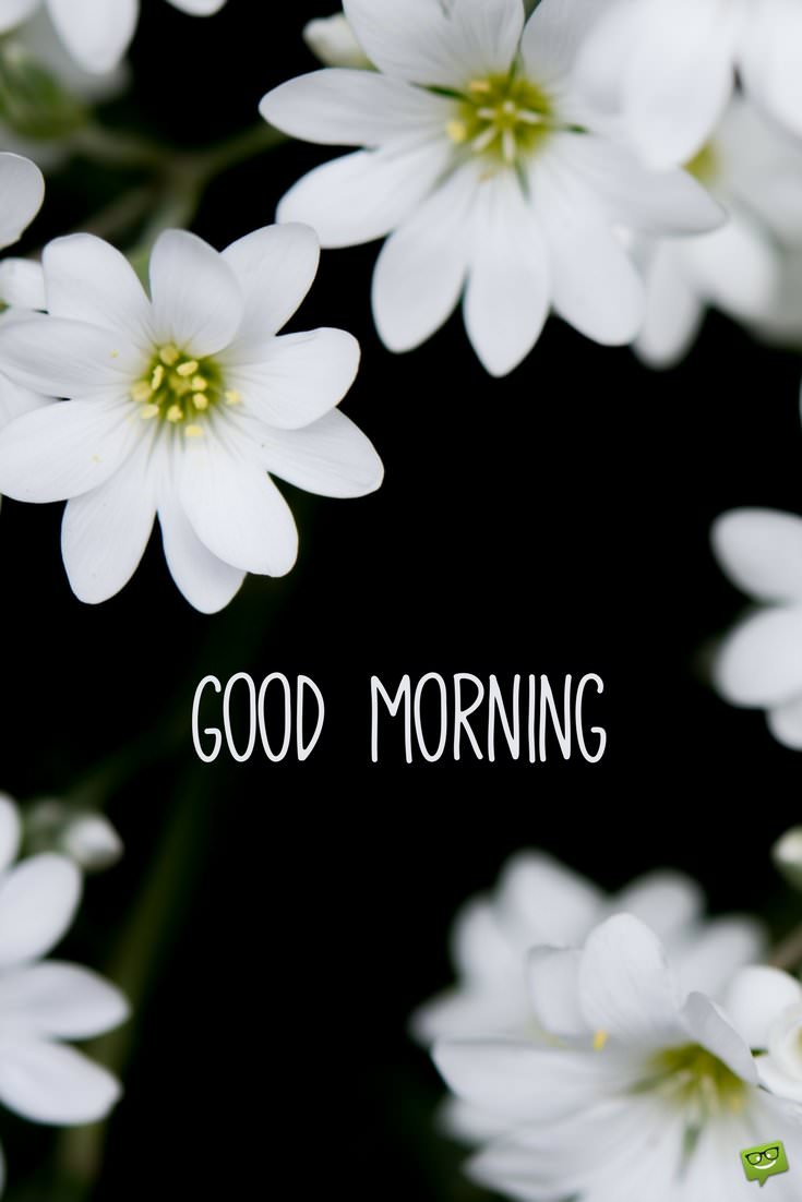 34 Brilliant Good Morning Quotes To Make Your Day