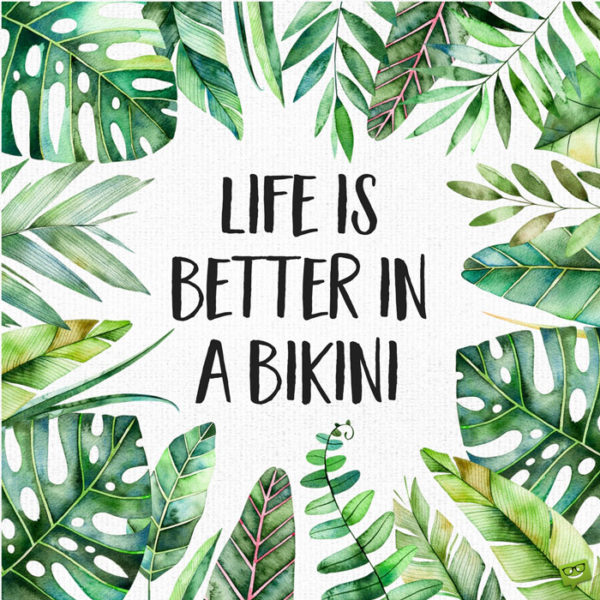 Tree Quote Wallpaper Mac Summer Quotes On Images To Share And Post