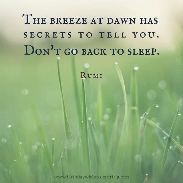 My 20 Favorite Rumi Quotes