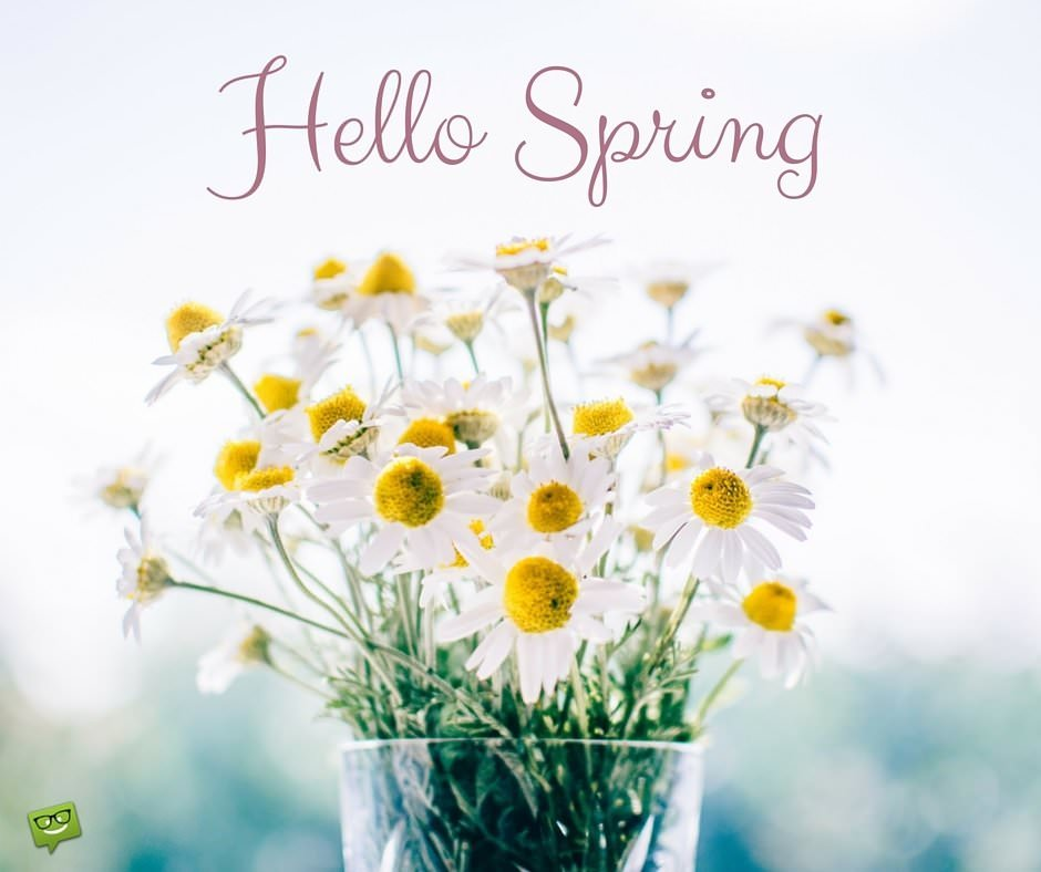 Hello Spring Quotes